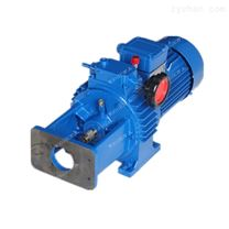 MBL07-Y0.75-2C手動無級變速電機