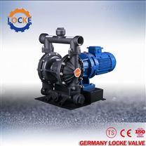 進口鑄鐵電動隔膜泵-德國洛克-德國