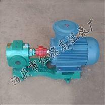 齒輪油泵華潮LB-38/0.6定制瀝青保溫齒輪泵