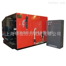 WDR6-1.25-6吨电蒸汽锅炉