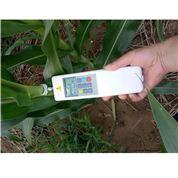 泛胜DDY系列植物茎秆强度测定仪