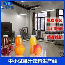 小型果汁饮料生产设备