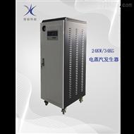YR24-0.7-D24KW电蒸汽发生器
