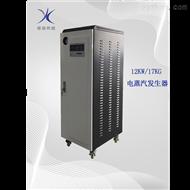 YR12-0.7-D12KW电蒸汽发生器
