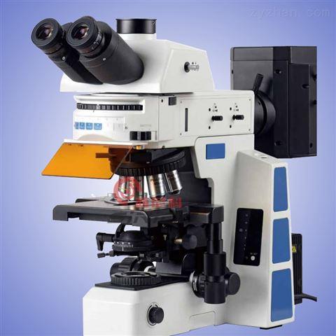 研究级荧光显微镜