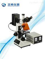 透反射荧光显微镜ZFM-200