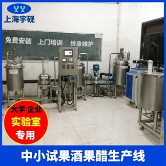 Y-GJC果酒飲料生產線
