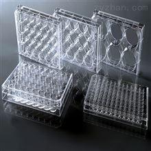 细胞培养小室(聚碳酸酯)膜 带盖TC