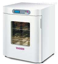 上海智城ZXDP-B2080隔水式电热恒温箱