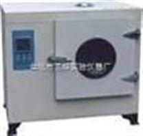 202A202A系列电热恒温干燥箱