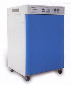 立式电热鼓风培养箱