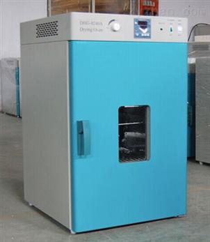 立式鼓风干燥箱DHG-9030A