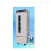 RXZ-250人工气候箱